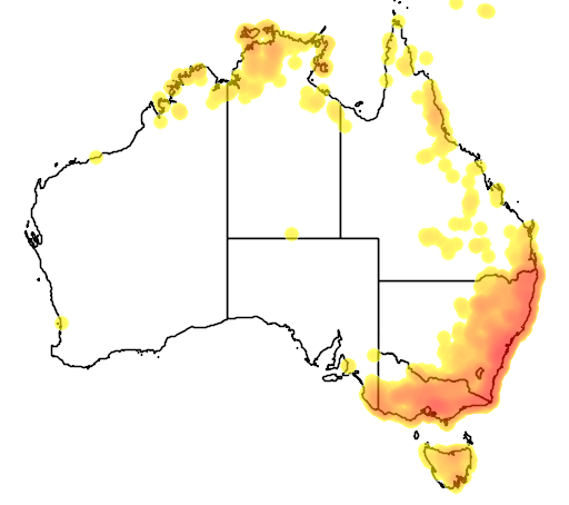 distribution map showing range of Petaurus breviceps in Australia