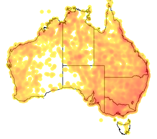 distribution map showing range of Petrochelidon ariel in Australia