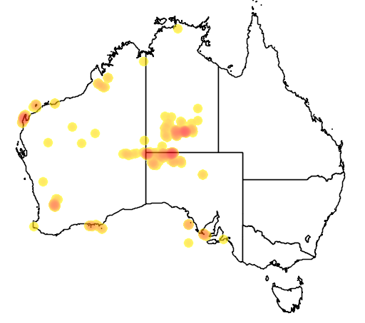 distribution map showing range of Petrogale lateralis in Australia