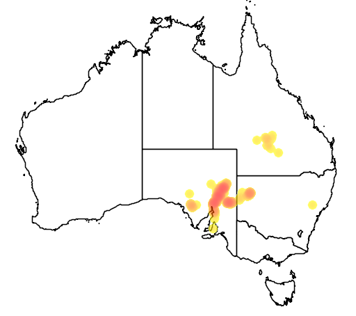 distribution map showing range of Petrogale xanthopus in Australia