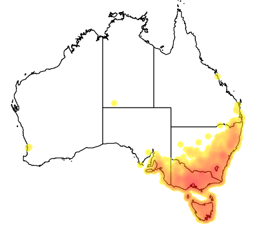 distribution map showing range of Petroica phoenicea in Australia