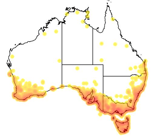 distribution map showing range of Phaps elegans in Australia