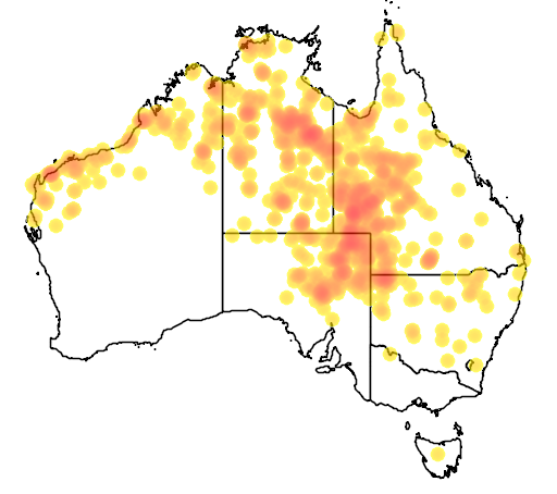 distribution map showing range of Phaps histrionica in Australia
