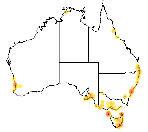 distribution map showing range of Phasianus colchicus in Australia