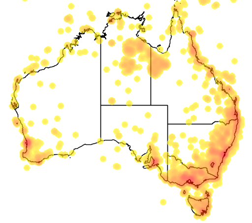 distribution map showing range of Phylidonyris nigra in Australia
