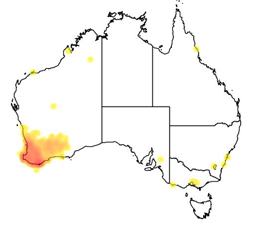 distribution map showing range of Platycercus icterotis in Australia
