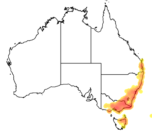 distribution map showing range of Platylobium formosum in Australia