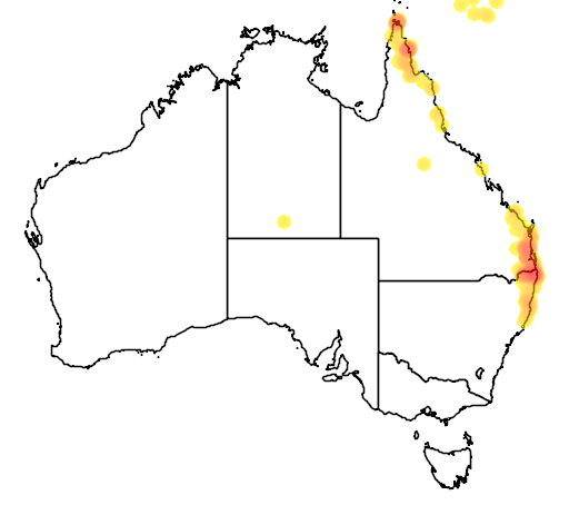 distribution map showing range of Podargus ocellatus in Australia