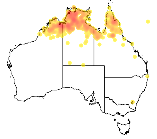 distribution map showing range of Poephila personata in Australia