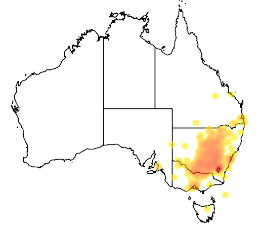 distribution map showing range of Polytelis swainsonii in Australia
