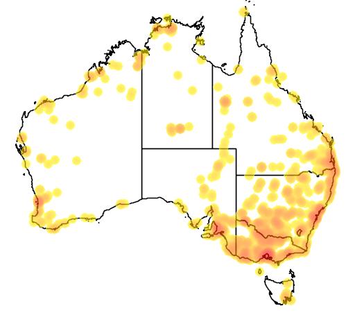 distribution map showing range of Porzana pusilla in Australia