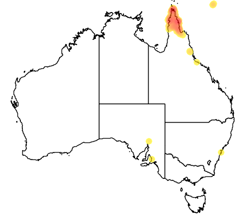 distribution map showing range of Probosciger aterrimus in Australia