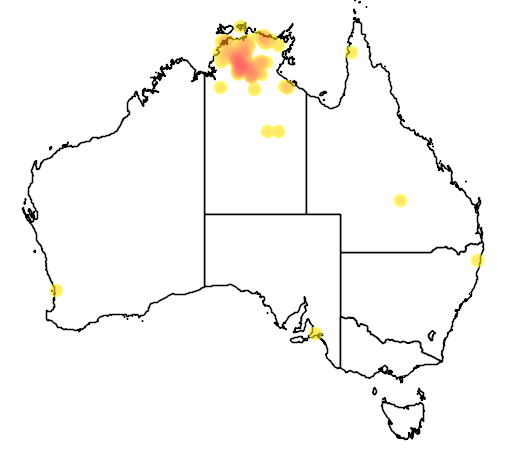 distribution map showing range of Psephotus dissimilis in Australia