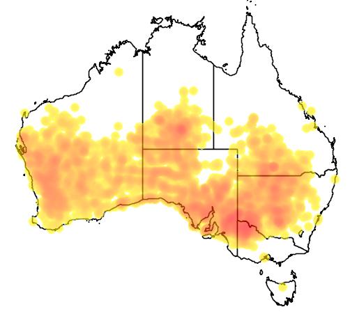 distribution map showing range of Psephotus varius in Australia