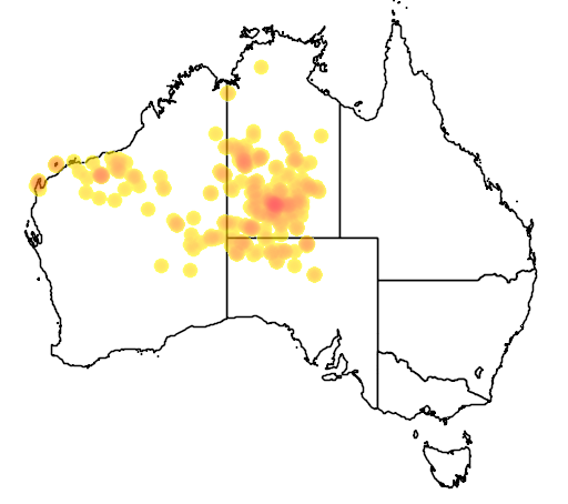 distribution map showing range of Pseudantechinus macdonnelliensis in Australia