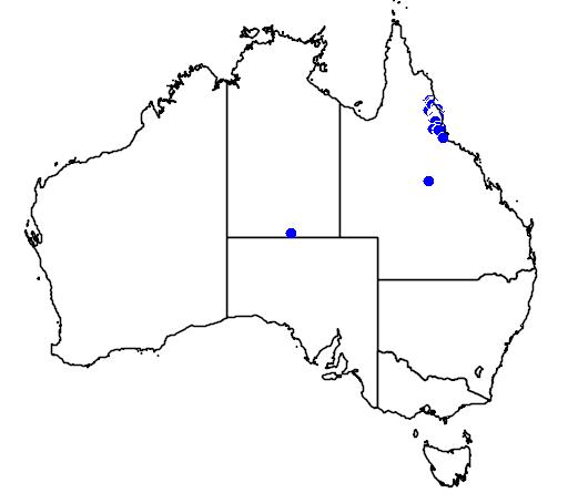 distribution map showing range of Pseudocheirus archeri in Australia