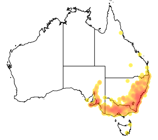 distribution map showing range of Pseudophryne bibroni in Australia