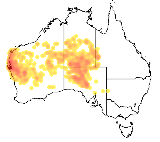 distribution map showing range of Psophodes occidentalis in Australia