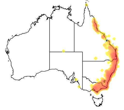 distribution map showing range of Psophodes olivaceus in Australia