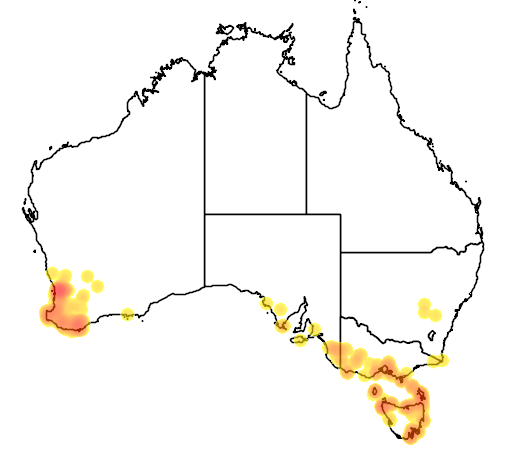 distribution map showing range of Pterostylis barbata in Australia