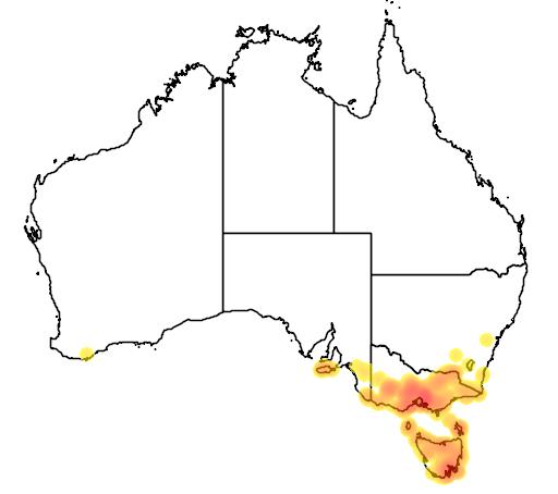 distribution map showing range of Pterostylis melagramma in Australia