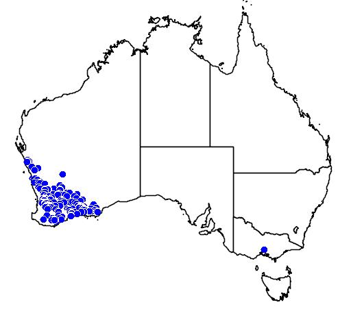 distribution map showing range of Pterostylis sargentii in Australia