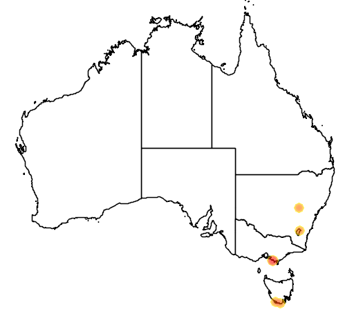 distribution map showing range of Pygoscelis antarctica in Australia