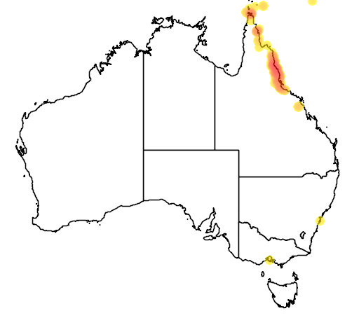 distribution map showing range of Rallina tricolor in Australia
