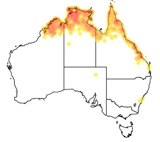 distribution map showing range of Ramsayornis fasciatus in Australia