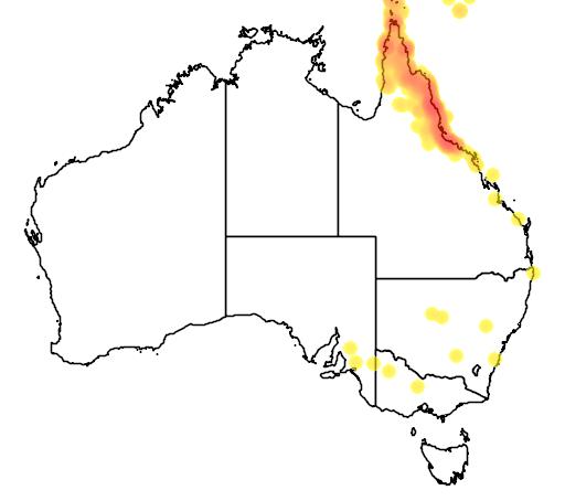 distribution map showing range of Ramsayornis modestus in Australia