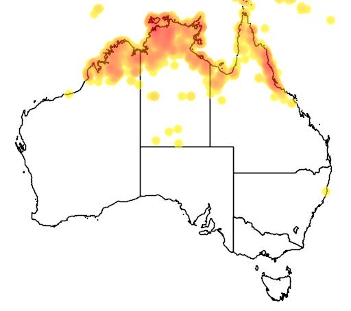 distribution map showing range of Rhipidura rufiventris in Australia