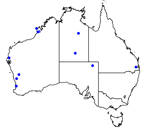 distribution map showing range of Rostratula benghalensis in Australia