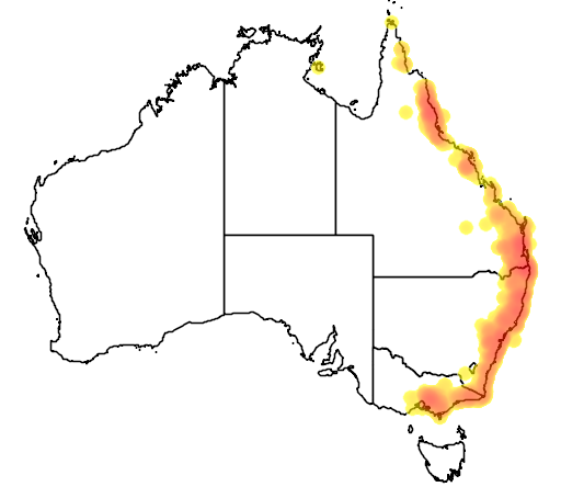 distribution map showing range of Sericornis magnirostris in Australia