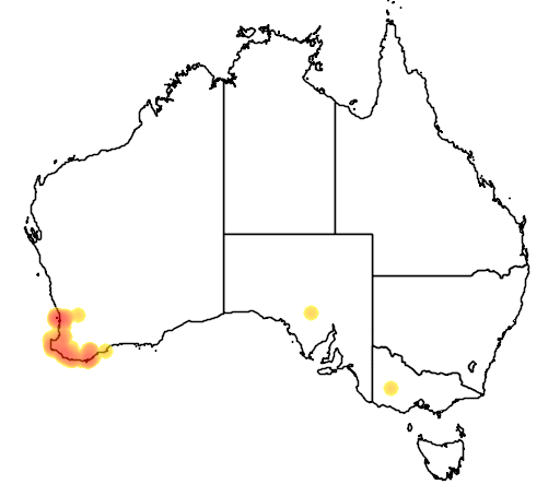 distribution map showing range of Setonix brachyurus in Australia