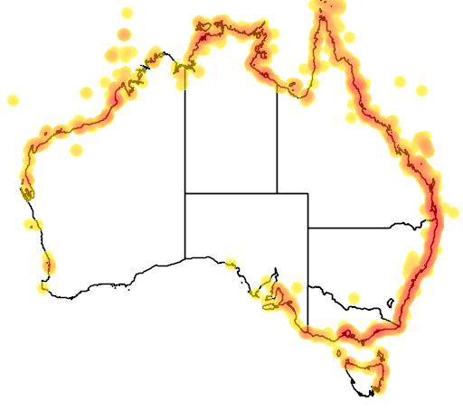 distribution map showing range of Sterna albifrons in Australia
