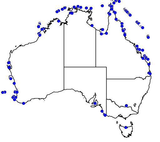 distribution map showing range of Sterna anaethetus in Australia