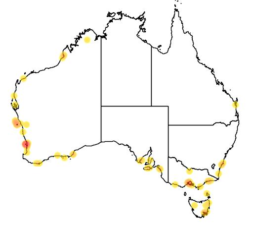 distribution map showing range of Sterna nereis in Australia