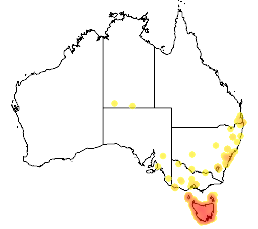 distribution map showing range of Strepera fuliginosa in Australia