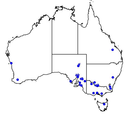 distribution map showing range of Struthio camelus in Australia