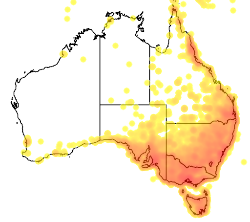 distribution map showing range of Sturnus sturninus in Australia