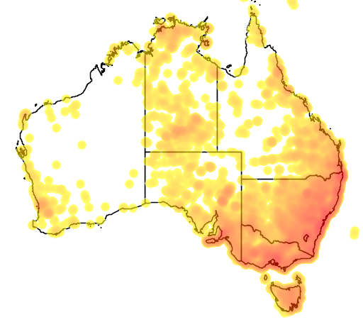 distribution map showing range of Tachyglossus aculeatus in Australia