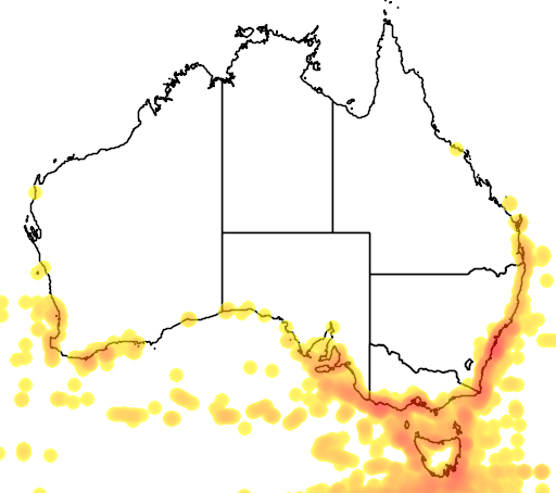 distribution map showing range of Thalassarche melanophris in Australia