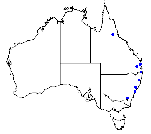 distribution map showing range of Thelychiton gracilicaulis in Australia