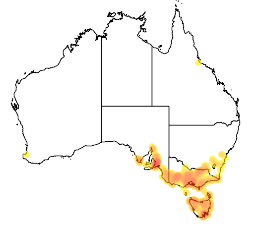 distribution map showing range of Thelymitra rubra in Australia