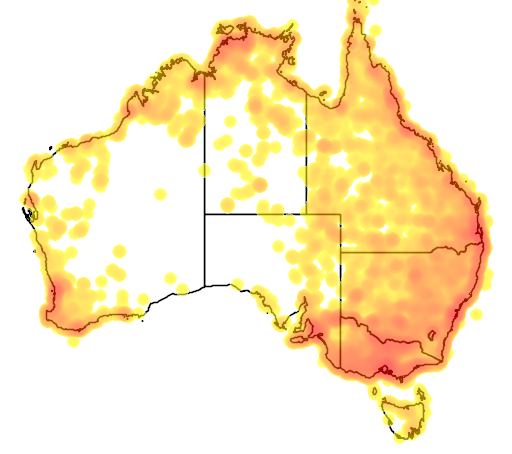 distribution map showing range of Threskiornis molucca in Australia