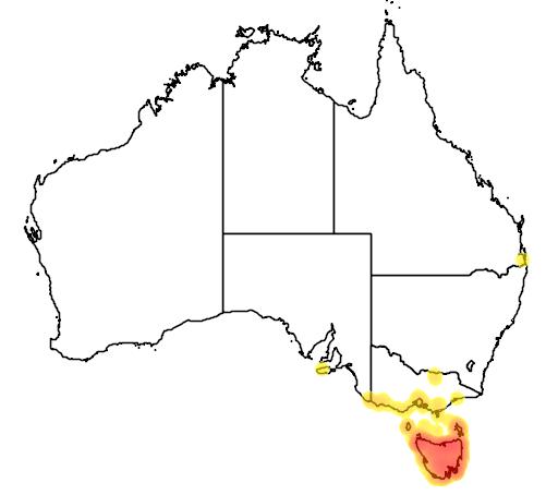 distribution map showing range of Thylogale billardierii in Australia