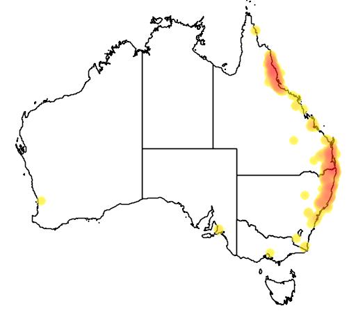 distribution map showing range of Tregellasia capito in Australia