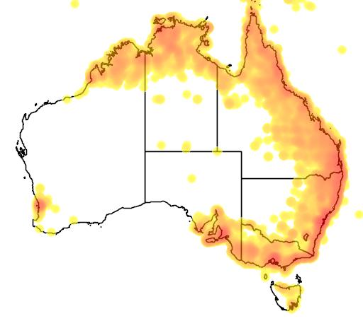 distribution map showing range of Trichoglossus haematodus in Australia