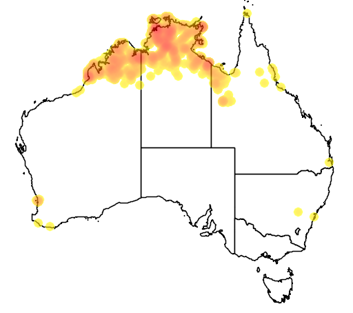 distribution map showing range of Trichoglossus rubritorquis in Australia