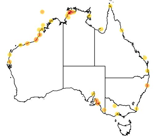 distribution map showing range of Tringa totanus in Australia